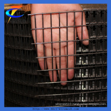 Manufacturer of Welded Wire Mesh (CT-19)