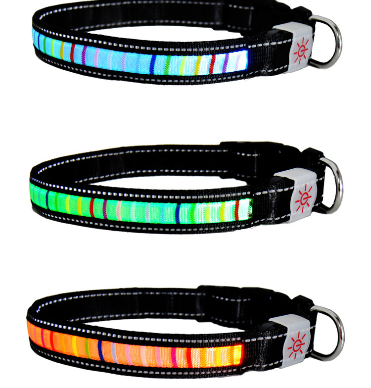 Christmas Light Dog Collar