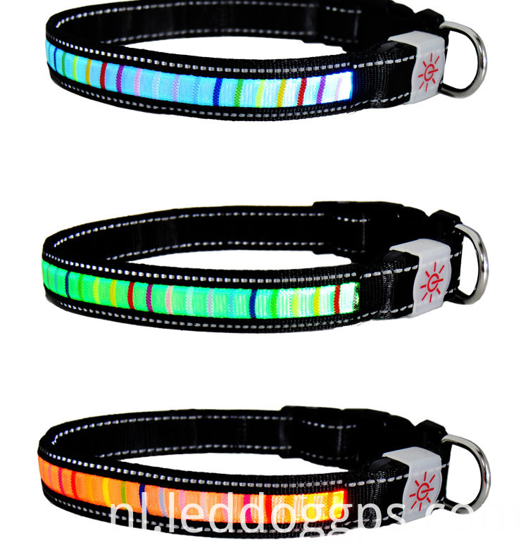 Nylon Pet Led Dog Collar