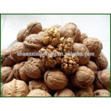 Grade A Qinling Mountains Thin Shell Walnut