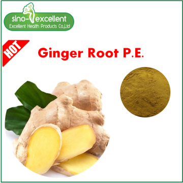 Extracto de raíz de jengibre Gingerols 1% -5% HPLC