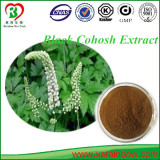 Factory Supply Pure natural black cohosh extract