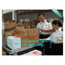 Pasta Export To Ningbo Logistics Service Agent