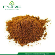 Best Price Natural Organic Sea buckthorn Fruit Powder