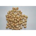 Atacado de alta qualidade de exportação de amendoim revestido popular