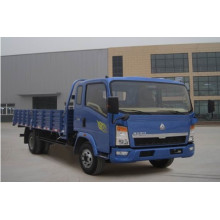 Sinotruk Light Duty Güterwagen 4X2