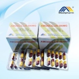 Amoxicillin Capsules from Anhui Medipharm