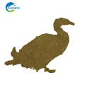 Las aves de corral alimentan las bacterias fotosintéticas para el tratamiento de estanques de peces