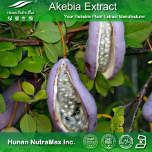 100% Natural Akebia Fruit Extract (4: 1~20: 1)
