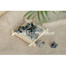 Fungo preto secado vegetal orgânico com preço competitivo