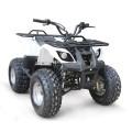 QUAD ГОНОЧНЫЙ EPA ATV 125CC