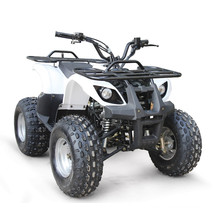 125CC ATV EPA RACING QUAD