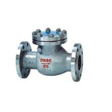 Ss304 Ss316 Dn 80 Válvula de Retenção de Aço Inoxidável