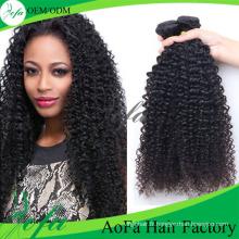 Cheveux vierges remy de cheveux crépus mongols humains kinky 100% non transformés