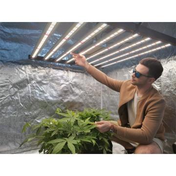 Led Strips Light 640w Used for Vegetable Seeds