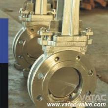 Литой стальной литой стальной Ss304 / Ss316 RF запорный клапан