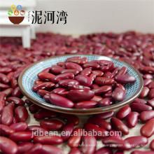 2017 seleccionan New Crop Britain Dard Red Kidney Beans para alimentos