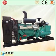 300kw China Brushless Diesel Gerando Set para Venda