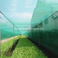 Greenhouse Plastic PP PE Anti Insect/ Bird Net