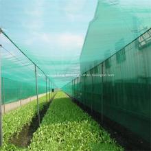 Invernadero plástico PP PE Anti Insectos / Bird Net
