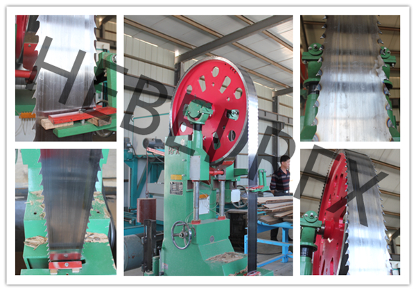 Twin Edge log sawing Band Saw machine
