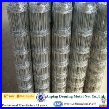 Galvanized Grassland Fence/Field Fence/Field Netting (Gold supplier/Manufacturer/ISO)