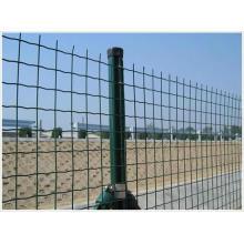 Wire Mesh Zaun Eurofence geschweißte Mesh für Garten