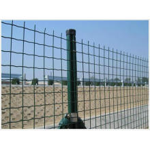 50X50mm Mesh PVC Coated Eurofence in Good Quality