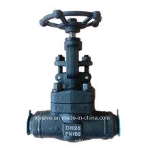 Válvula de globo de extremo de soldadura forjado de acero al carbono A105 DIN Pn100