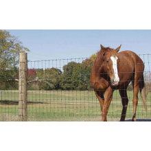 2014 Professional Manufacture Grassland Fence/Farm Field Fence
