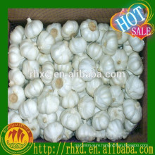 fresh white garlic 5.0cm garlic pure white garlic