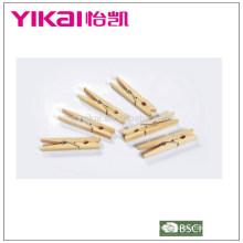Conjunto de pentes de madeira de pinho 24pcs provando insetos
