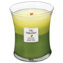 A fragrância do perfume Scented a vela orgânica do partido da cera da soja no frasco de vidro