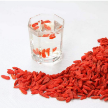 Fruits sains traditionnels secs de baie de Goji rouge
