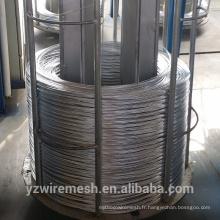 30-500g / m2 Fil galvanisé trempé à chaud / fil galvanisé à chaud par rouleau