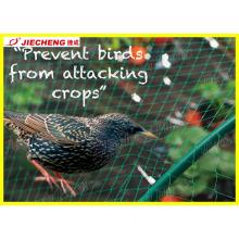 Plastic Anti Bird Mesh Machine