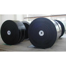 Nylon200 Molded Edge Conveyor Belt