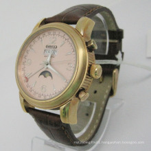 Stainless Steel Automatic Watch (HLSL-1008)