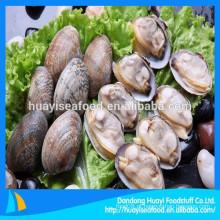 Nós exportamos principalmente moluscos congelados clam curto necked com bom preço