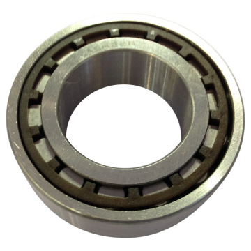 Cylindrical Roller Bearing Plastic Cage N