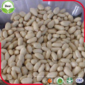 Whole Blanched Peanut Kernels 29/33