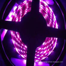 5050 bande rayée pourpre souple imperméable rgb led strip light