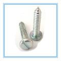 DIN7971 Vis autotaraudeuse à tête cylindrique fendue, plaquée zinc
