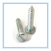 DIN7971 Zinc Plated Slotted Pan Head Self Tapping Screw