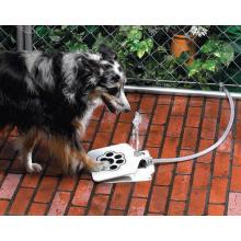 Fontaine à eau pour chien Pet Zoomer 2017