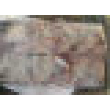 Großhandel Meeresfrüchte gefrorene rote Stingray Ray Fisch / Raja Porosa Filet