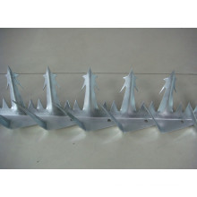 Hot Sale and Popular Wall Spike Security