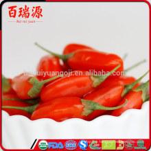 Goji berries wholesale goji berry diet vendita bacche di goji