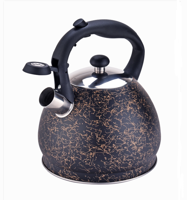 Stainless Steel Whistle Kettle Fh 517