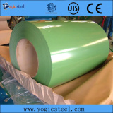 Ral Color Prepainted Galvanied Steel Coil